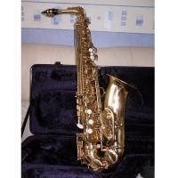 Sax contralto Roy Benson AS101  Mib SPEDITO GRATIS