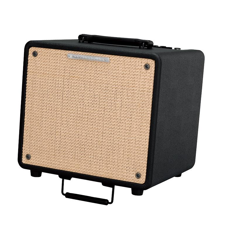 Ibanez Troubadour T80N Amplificatore per chitarra acustica