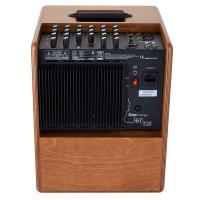 Acus One Forstrings S6TW 130W Amplificatore per strumenti acustici e voce_2