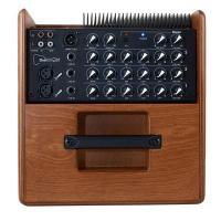 Acus One Forstrings S6TW 130W Amplificatore per strumenti acustici e voce_3