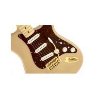 Fender Deluxe Stratocaster Player Honey Blonde Chitarra Elettrica_3
