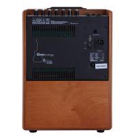 Acus One Forstrings 8W 200W Amplificatore per strumenti acustici e voce_3